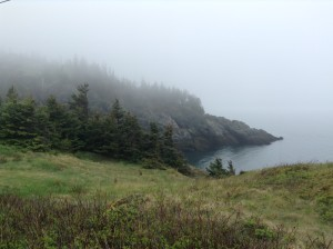 foggy morning view of coast on the Grand Manan Island