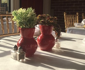Sun shining on table set with white tablecloth and two red vases holding succulent plants.